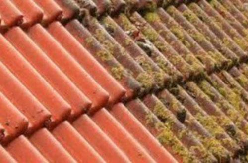 dakreiniging-doetinchem-schoonmaken-dak